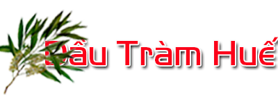 Dầu Tràm Huế – Thương hiệu dầu tràm uy tín